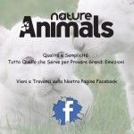Adv 400x600 2 150x150 Nature and Animals   nuova rivista fotografica edita dalla Editrice Progresso